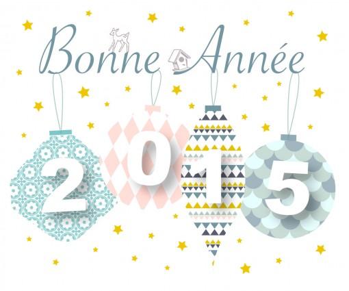 BonAnnee2015